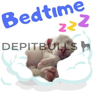 Pack of Stickers for WhatsApp DEPITBULLS Stickers de perros cachorros Pitbulls Picbull  cachorro durmiendo pitbull cobra bedtime