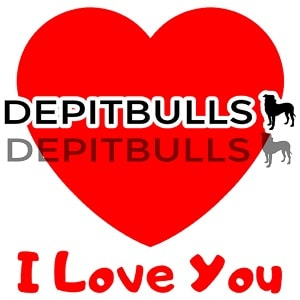 Pack of Stickers for WhatsApp DEPITBULLS Stickers de perros cachorros Pitbulls Picbull love i love you