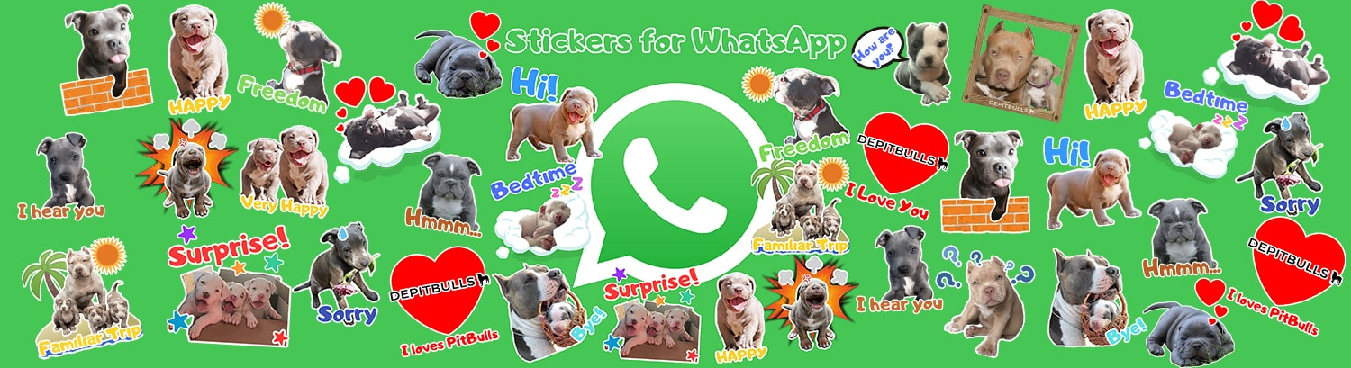 Stickers for WhatsApp DEPITBULLS