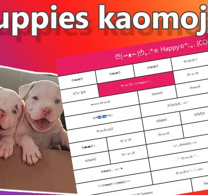 Puppies kaomoji o Emoji Japonés de cachorros ᕦ(◥▶ᴥ◀◤)ᕥ ♪