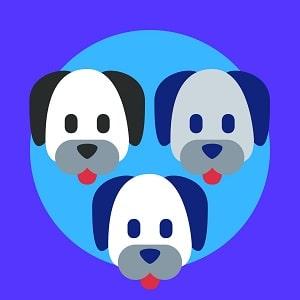 TIPOS-DE-PITBULLS-QUE-EXISTEN-foto-photo-de-PitBull-Personalidad-y-Temperamento-DEPITBULLS-Lista-de-ORIGEN----Pitbull--American Staffordshire Terrier