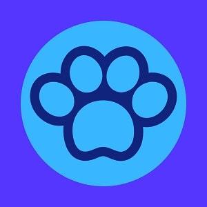 TIPOS-DE-PITBULLS-QUE-EXISTEN-foto-photo-de-PitBull-Personalidad-y-Temperamento-DEPITBULLS-Lista-de-ORIGEN-Características--Pitbull--American Staffordshire Terrier