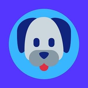 TIPOS-DE-PITBULLS-QUE-EXISTEN-foto-photo-de-PitBull-Personalidad-y-Temperamento-DEPITBULLS-Lista-de-ORIGEN-Personalidad---Pitbull--PitBull American Staffordshire Terrier
